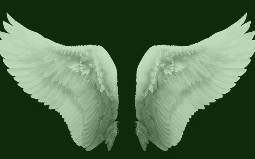 Quem é o investidor anjo?