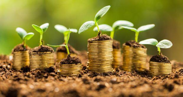 O impacto do investimento em empresas na geração de novos empregos