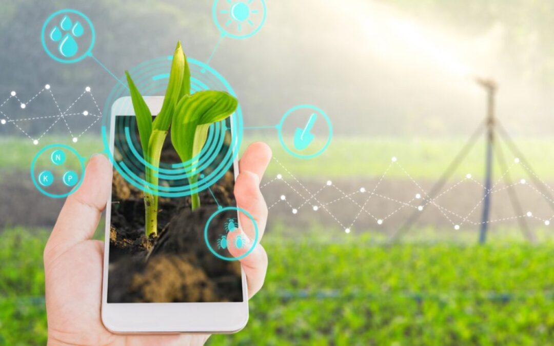 Agtechs são o futuro do agronegócio