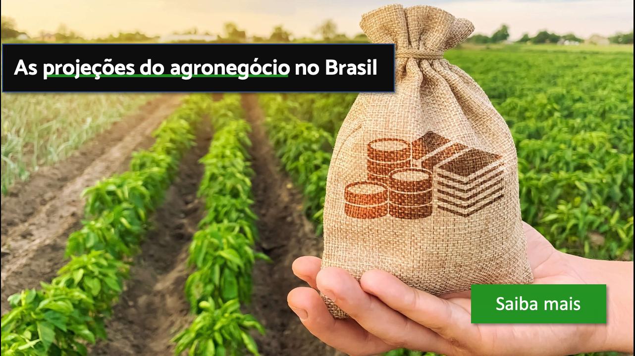 projeçoes do agronegocio no brasil